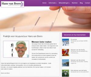 Homepage acupunctuur van Brero te Zandvoort